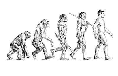 biological evolution1013 - 【ネタバレ有】アポカリプスの砦レビュー